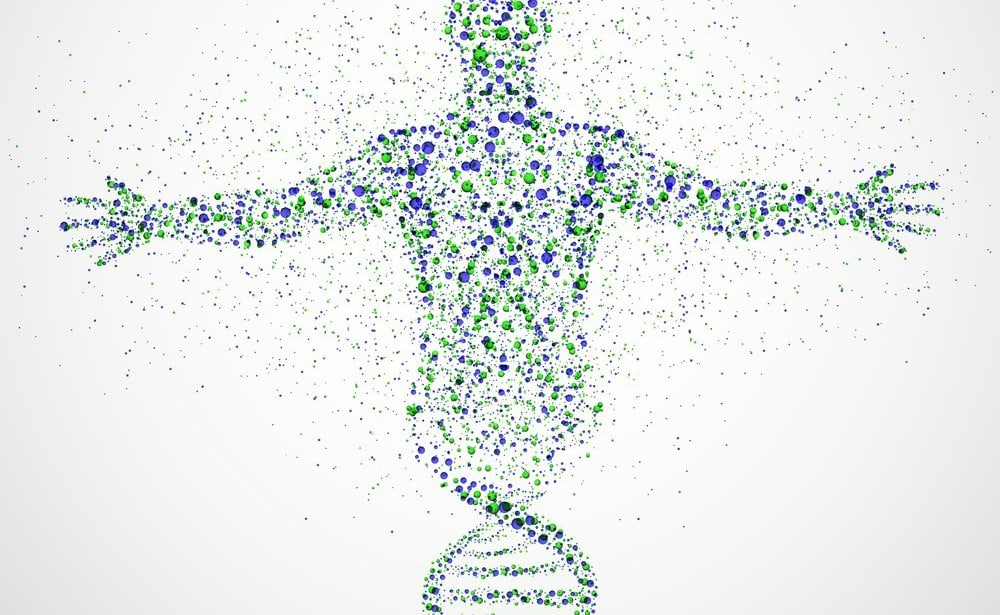מה גלי ההלם עושים לגופנו?